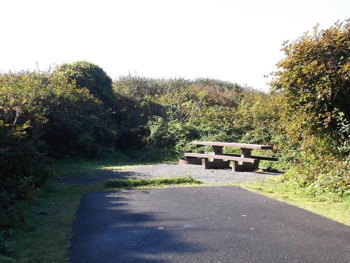Picture of campsite with picnic tableCampsite E10
