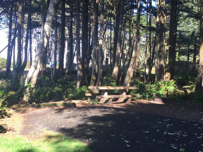 Picture of campsite with picnic tableCampsite E11