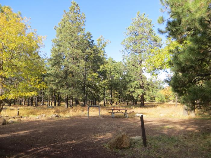Little Eldon Springs Horse Camp site #03 with full view of wooded campsite, picnic area, and hitching post.