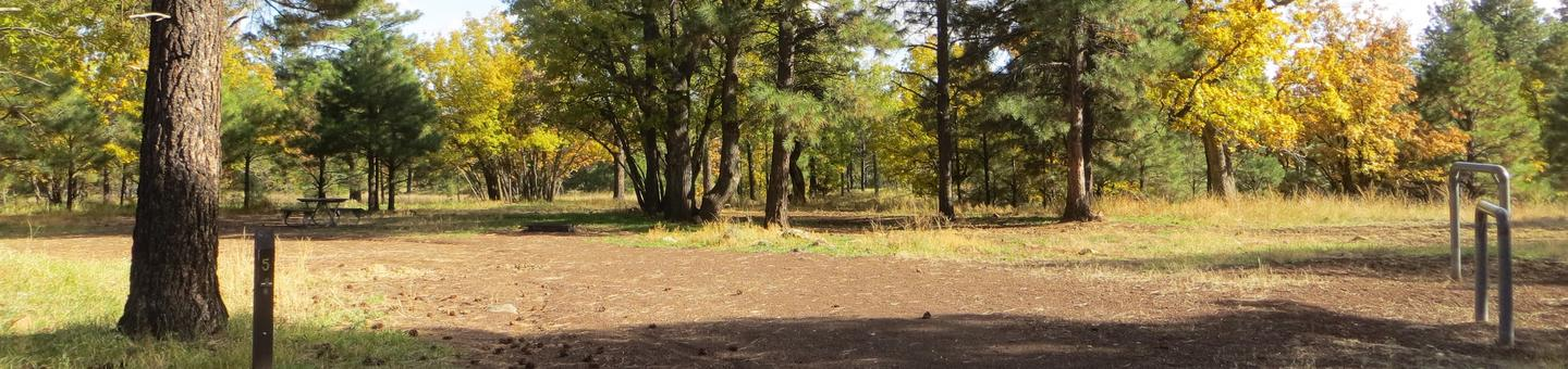 Little Eldon Springs Horse Camp site #05 with full view of wooded campsite, picnic area, and hitching post.