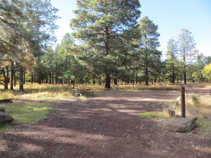 Little Eldon Springs Horse Camp site #07 with full view of wooded campsite, picnic area, and hitching post.