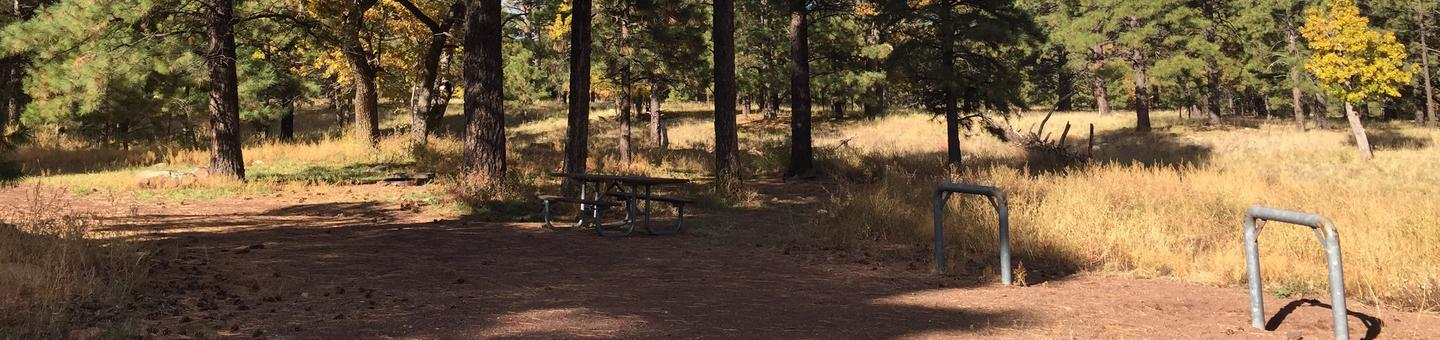 Little Eldon Springs Horse Camp site #08 with full view of wooded campsite, picnic area, and hitching post.