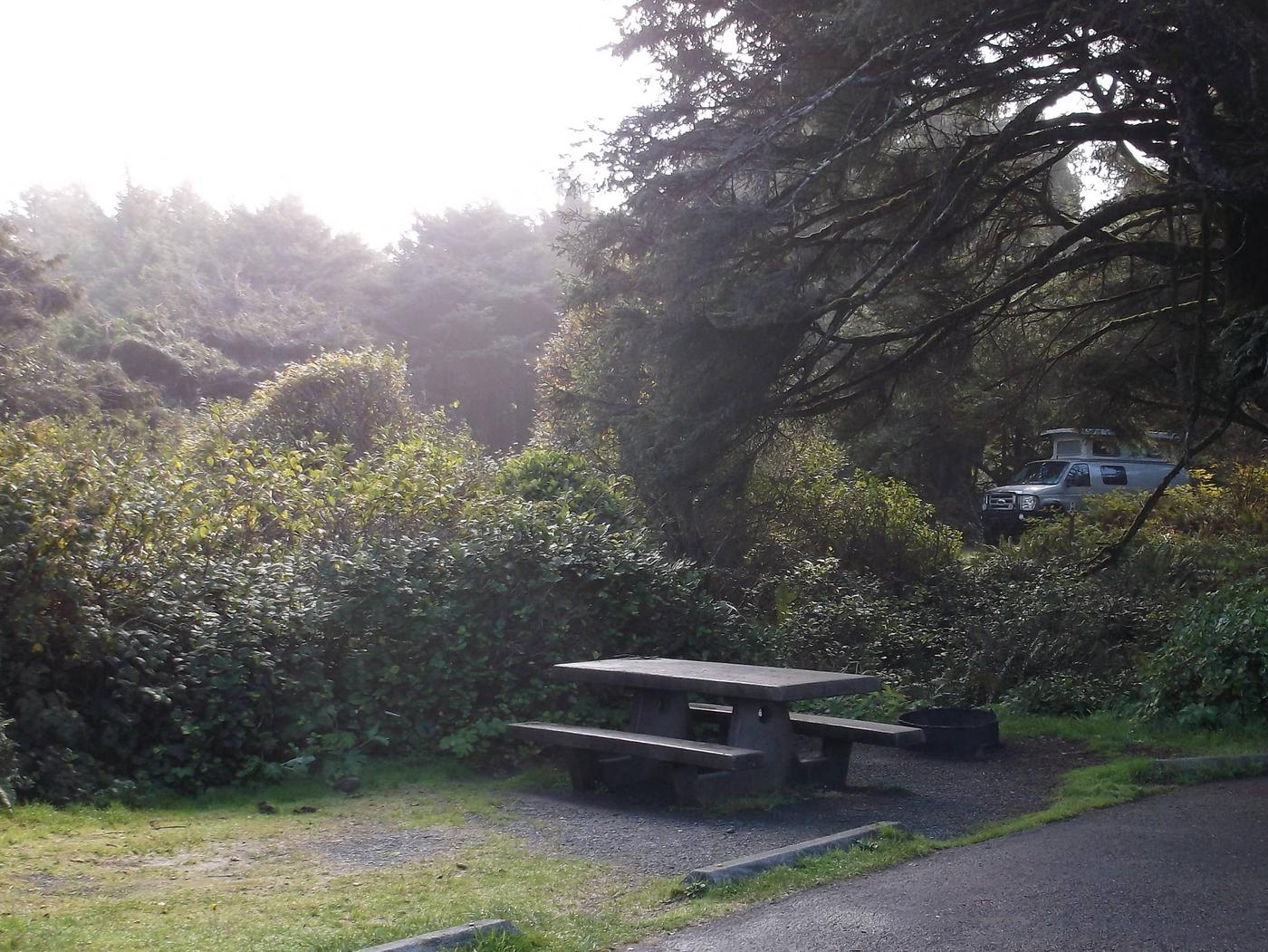Picture of campsite with picnic tableCampsite F5