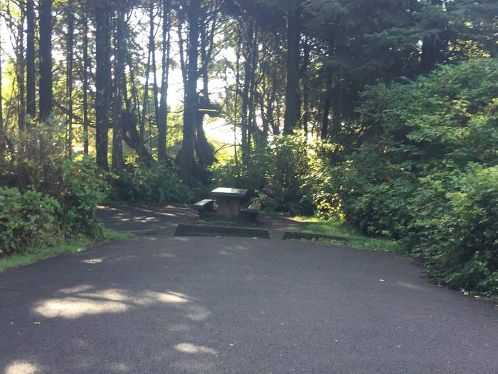 Picture of campsite with picnic table. Campsite F9