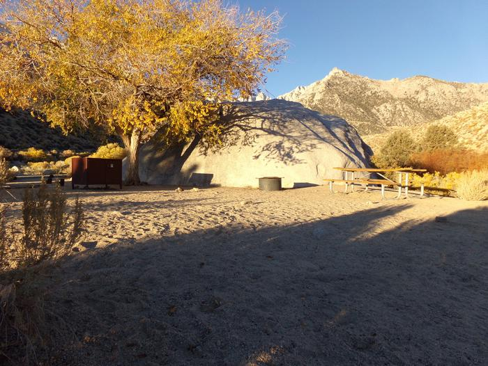Lone Pine Campground site #01 featuring picnic area, fire pit, and food storage with mountain views.