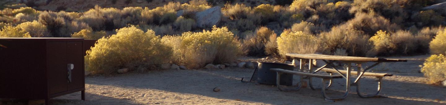 Lone Pine Campground site #02 featuring picnic area, fire pit, and food storage.