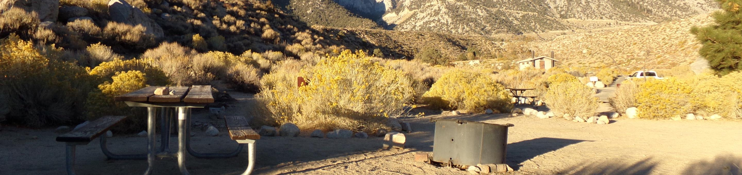 Lone Pine Campground site #04 featuring picnic area, fire pit, and camping space.