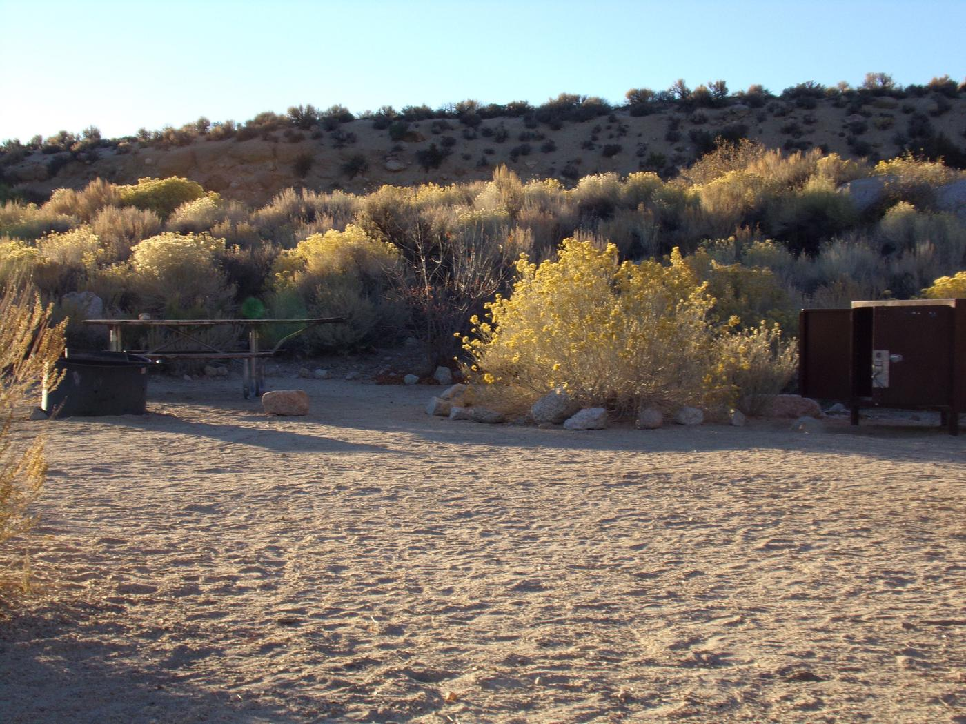 Lone Pine Campground site #04 featuring picnic area, food storage, fire pit, and camping space.