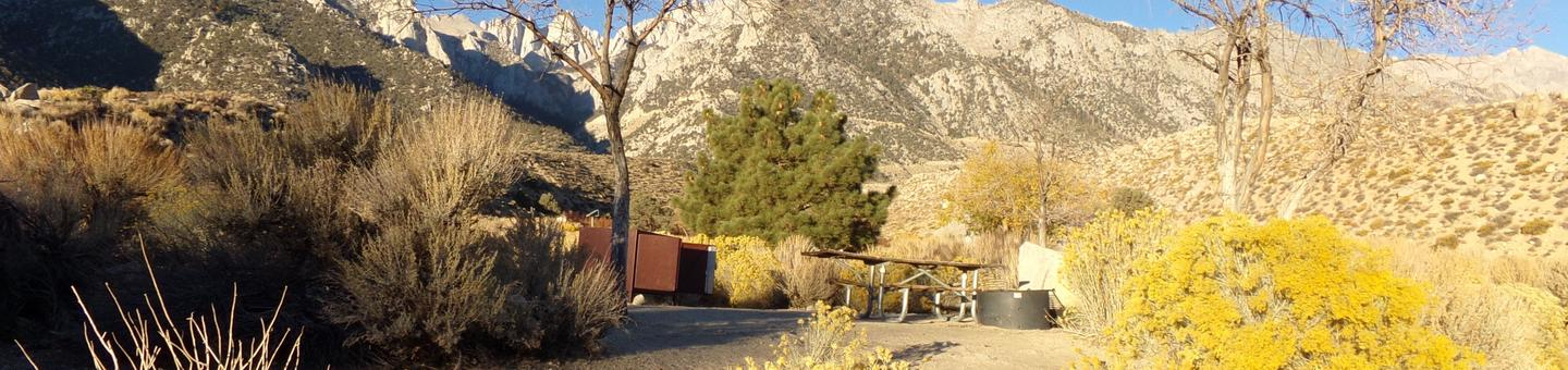 Lone Pine Campground site #06 featuring picnic area, food storage, and fire pit with mountain views.
