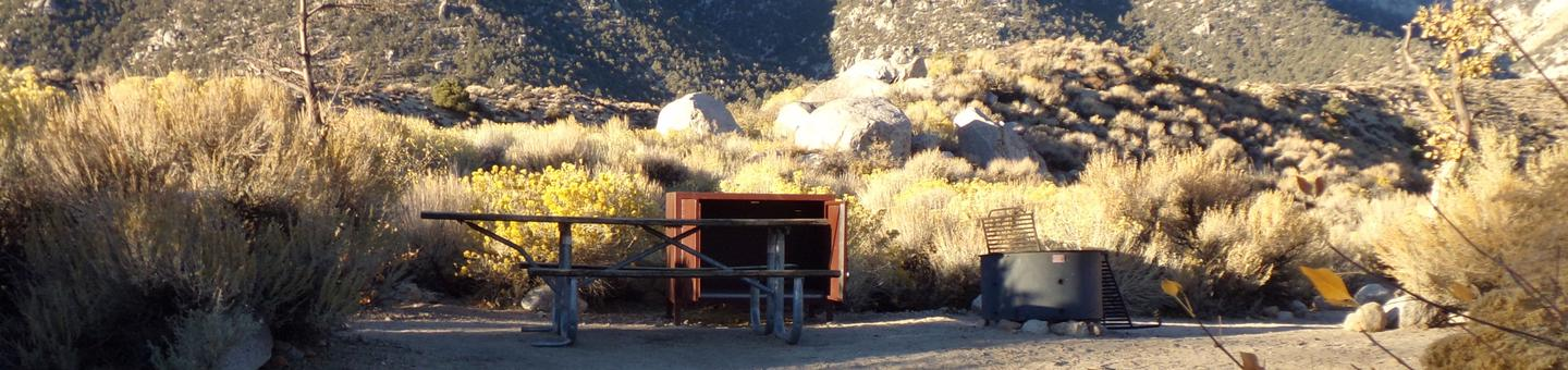 Lone Pine Campground site #08 featuring picnic area, food storage, and fire pit with mountain views.