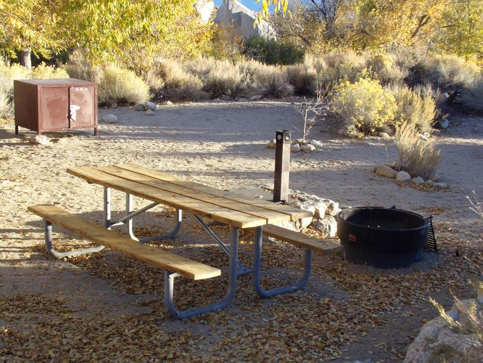 Lone Pine Campground site #12 featuring picnic area, camping area, and fire pit.