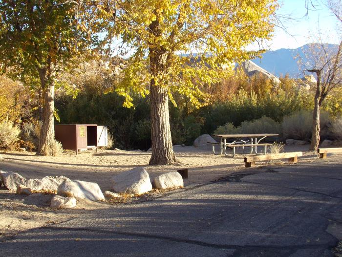 Lone Pine Campground site #13 featuring picnic area, food storage, and fire pit.