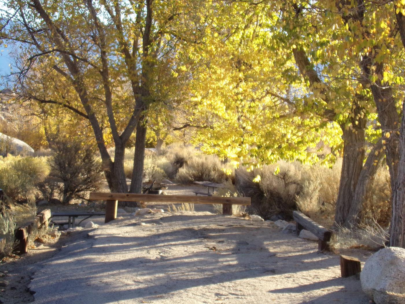 Parking space and entrance to site #14, Lone Pine Campground.