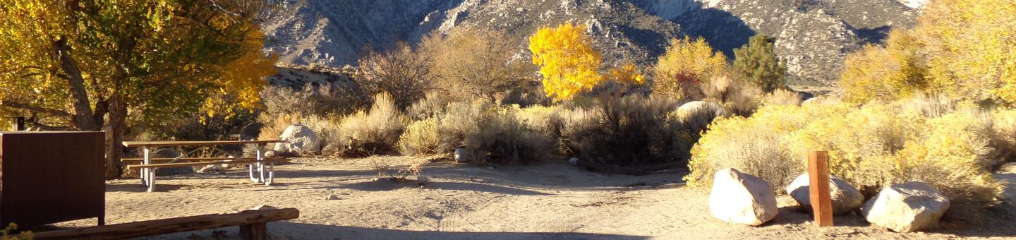 Lone Pine Campground site #16 featuring picnic area, food storage, and camping space with mountain views.
