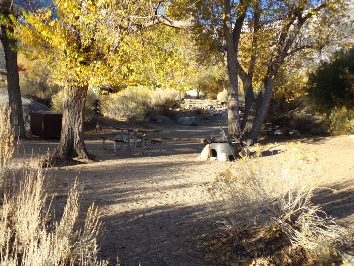 Lone Pine Campground site #17 featuring picnic area, food storage, and fire pit with mountain views.