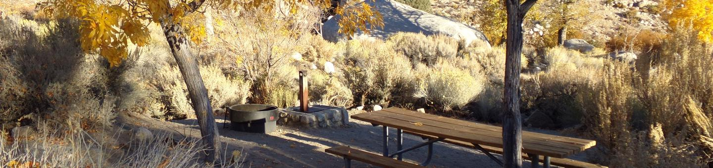 Lone Pine Campground site #18 featuring picnic area, fire pit, and camping space with mountain views.