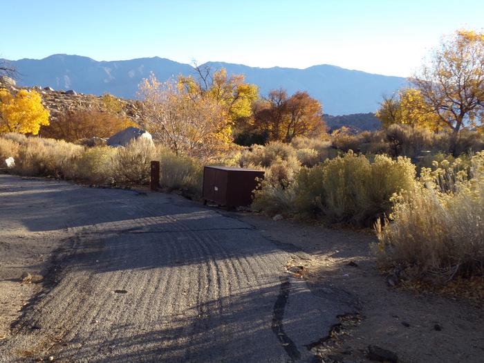 Additional view of campsite #18 at Lone Pine Campground that features the mountain views and food storage.