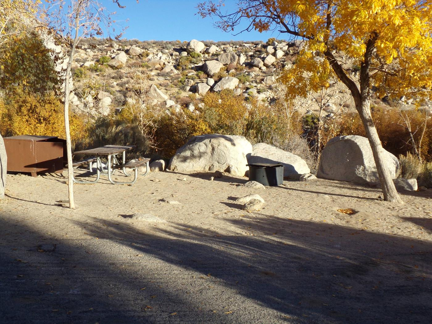 Lone Pine Campground site #20 featuring picnic area, food storage, and fire pit.
