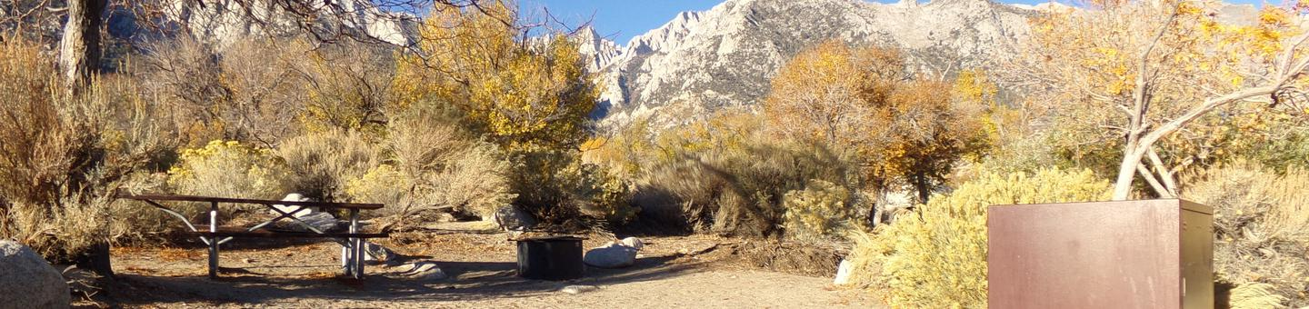 Lone Pine Campground site #24 featuring picnic area, food storage, and fire pit.