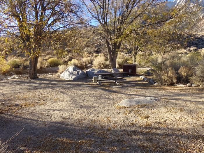 Lone Pine Campground site #26 featuring picnic area, food storage, and fire pit.