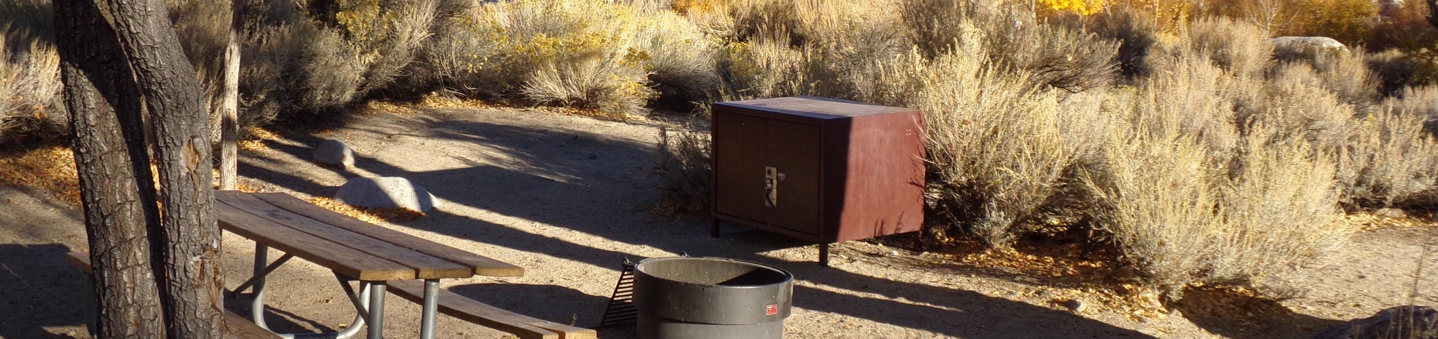 Lone Pine Campground site #28 featuring picnic area, food storage, and fire pit.