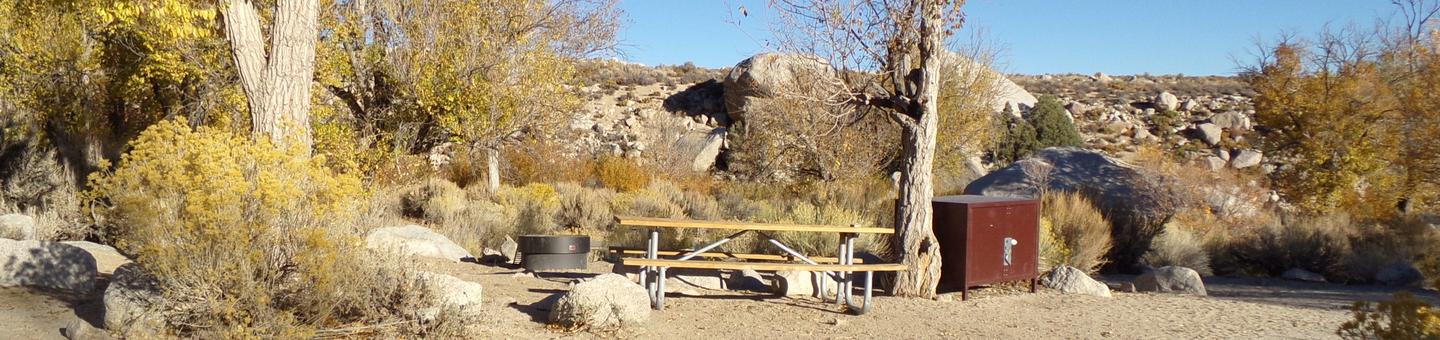 Lone Pine Campground site #30 featuring full campsite view with provided table, food storage, and fire pit.