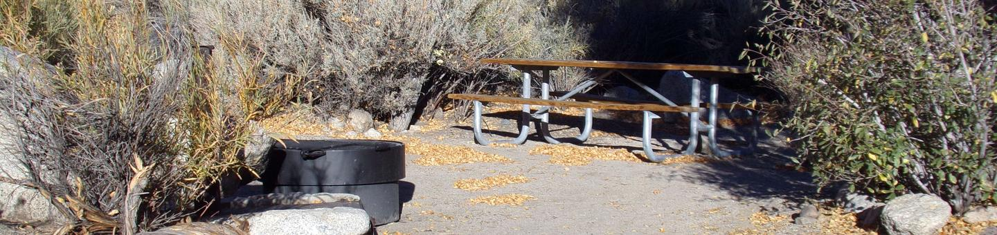 Lone Pine Campground site #32 featuring picnic table, fire pit, and camping space.