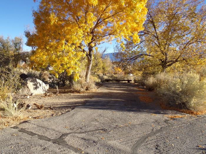Parking space and entrance to site #32, Lone Pine Campground.