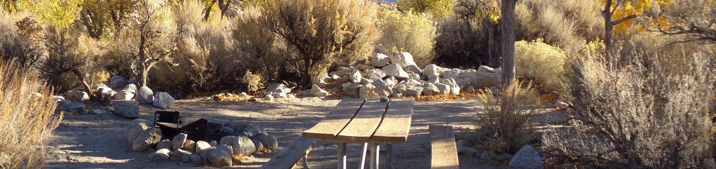 Lone Pine Campground site #34 featuring picnic area, fire pit, and camping space.