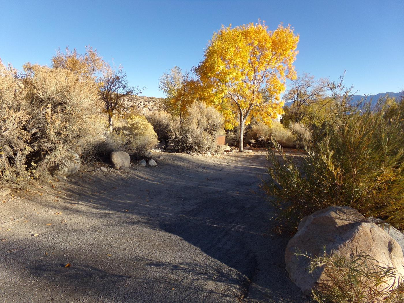 Parking space and entrance to site #34, Lone Pine Campground.