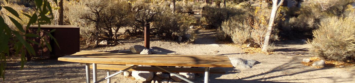 Lone Pine Campground site #36 featuring picnic area, food storage, and camping space with mountain views.