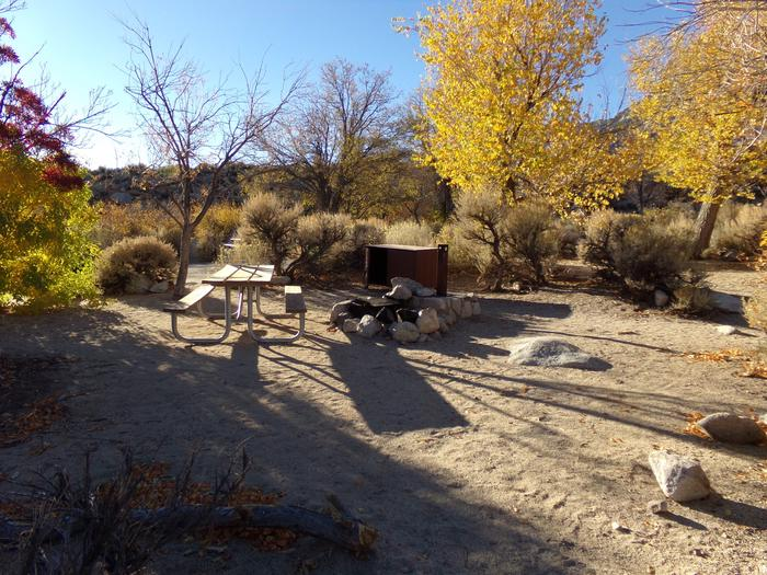 Additional campsite #36 view at Lone Pine Campground.