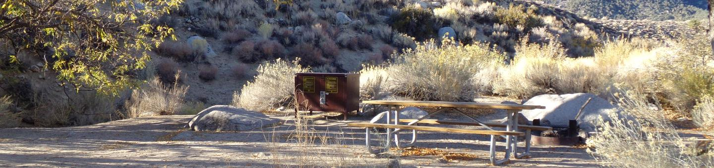 Lone Pine Campground site #37 featuring picnic area, food storage, and fire pit.