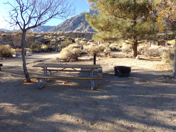 Lone Pine Campground site #38 featuring picnic area, fire pit, and camping space.