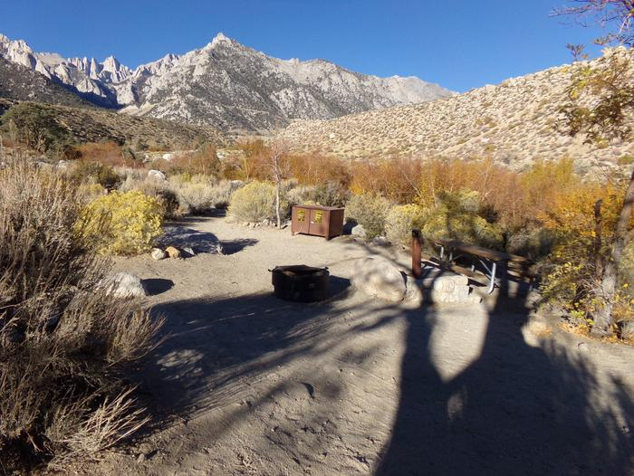 Lone Pine Campground site #40 featuring picnic area, food storage, and fire pit.