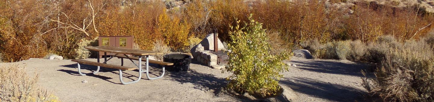 Lone Pine Campground site #41 featuring picnic area, food storage, and fire pit.