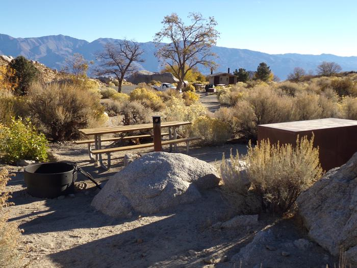 Lone Pine Campground site #42 featuring picnic area, food storage, and fire pit.