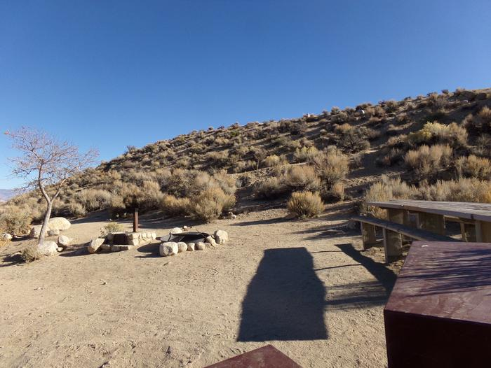 Lone Pine Campground site #43 featuring picnic area, food storage, and fire pit.