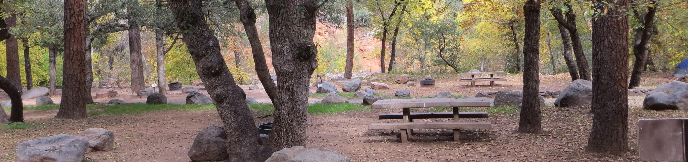 Manzanita Campground site #01 featuring the treed picnic area and fire pit.