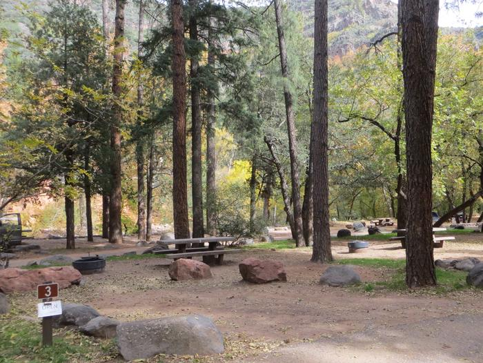 Manzanita Campground site #03 featuring the treed picnic area, camping space, and fire pit.