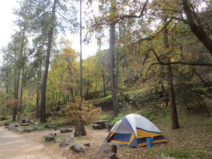 Manzanita Campground site #06 featuring the treed picnic area, camping space, and fire pit.