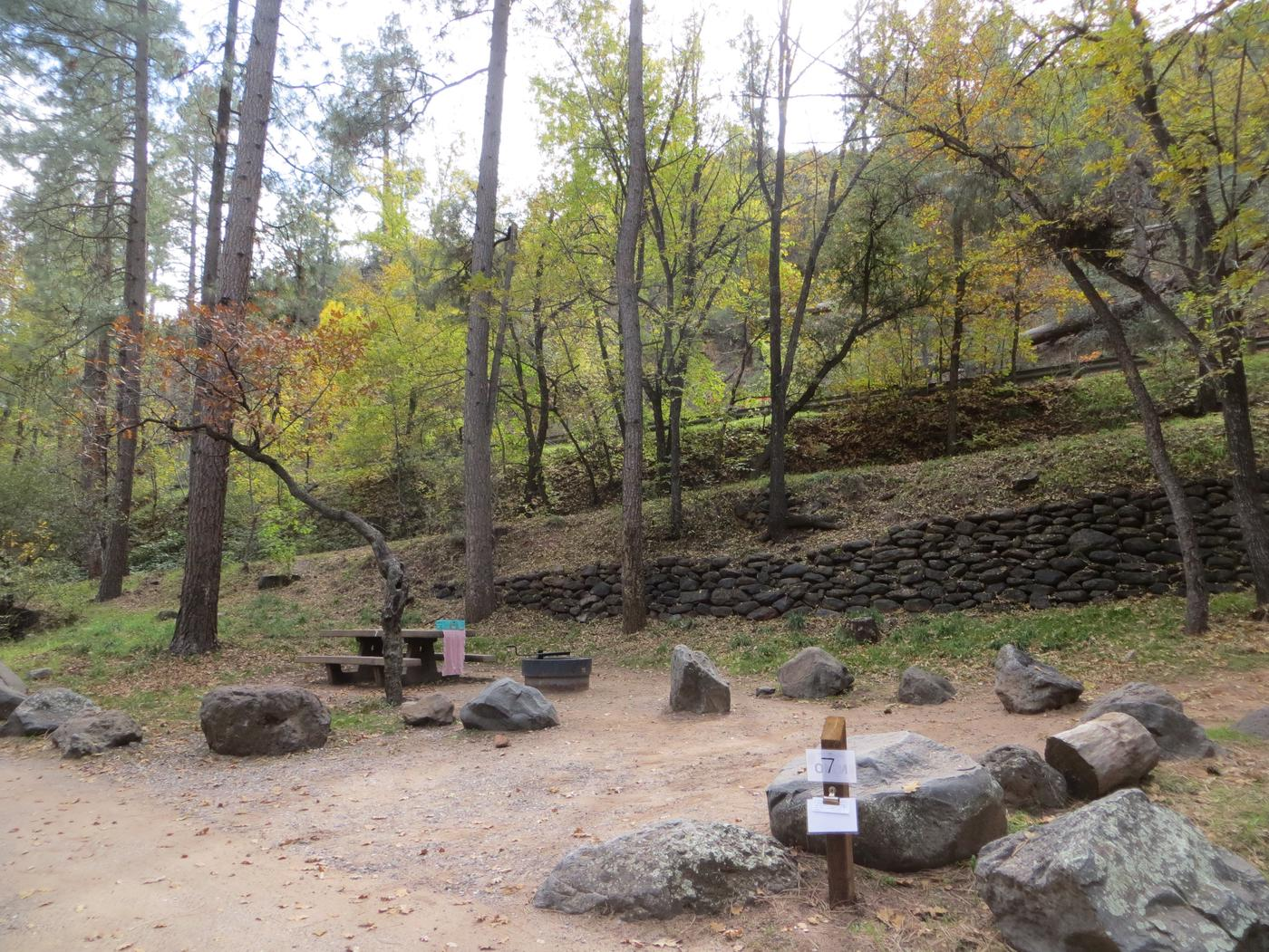 Manzanita Campground site #07 featuring the treed picnic area, camping space, and fire pit.