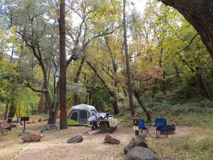 Manzanita Campground site #09 featuring the treed picnic area, camping space, and fire pit.