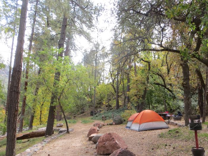 Manzanita Campground site #10 featuring the treed picnic area, camping space, and fire pit.