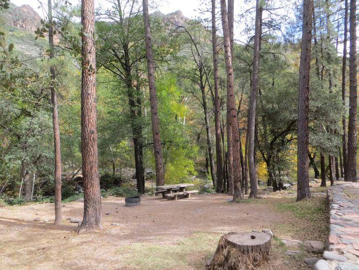 Manzanita Campground site #11 featuring the treed picnic area, camping space, and fire pit.