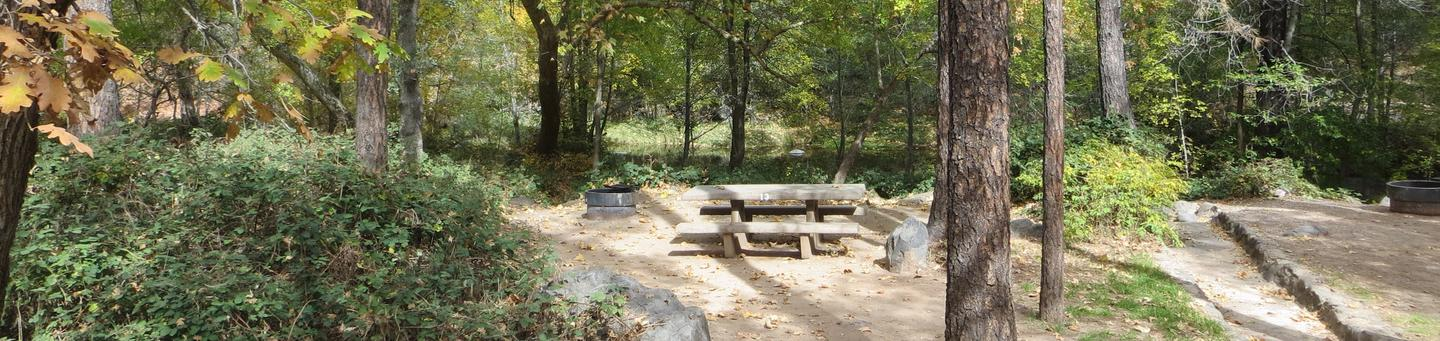 Manzanita Campground site #13 featuring the treed picnic area, camping space, and fire pit.