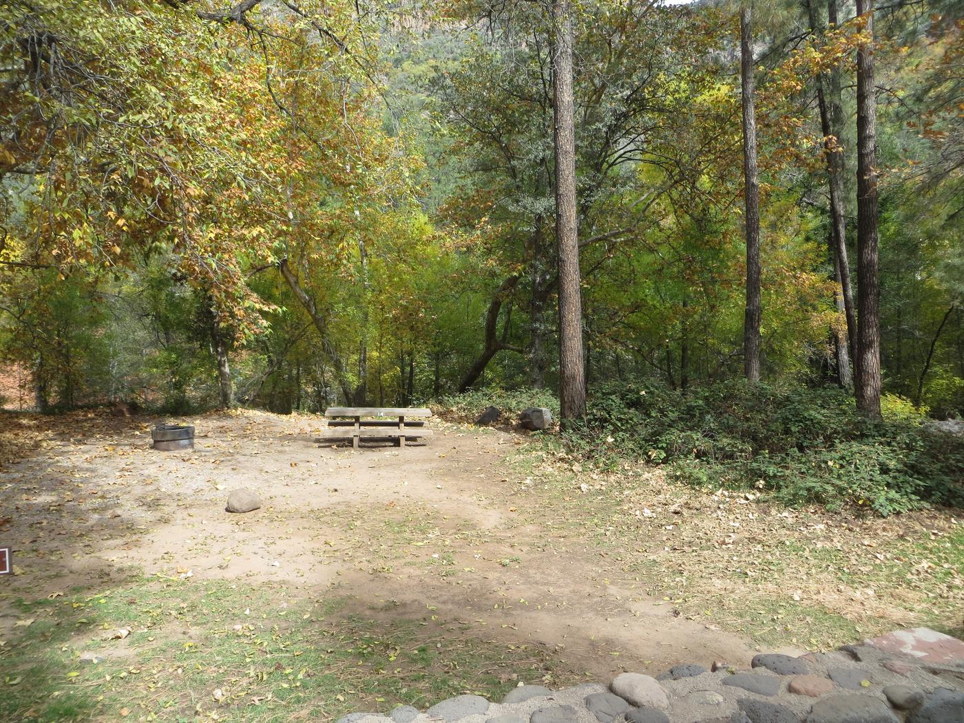 Manzanita Campground site #14 featuring the treed picnic area, camping space, and fire pit.