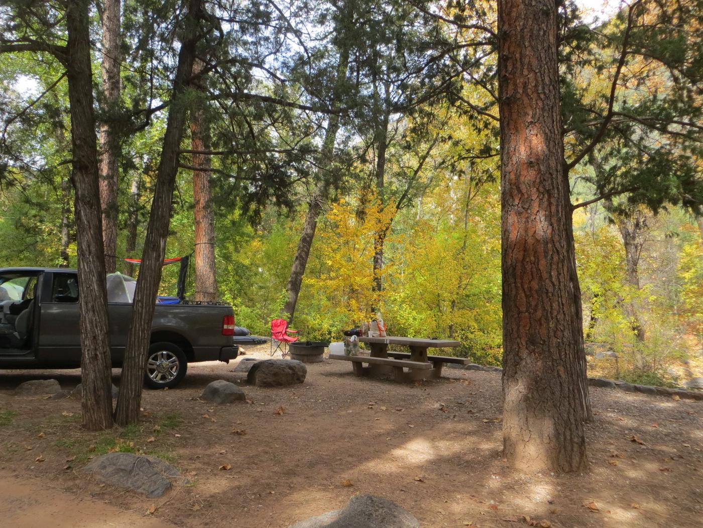 Manzanita Campground site #18 featuring the treed picnic area, camping space, and fire pit.