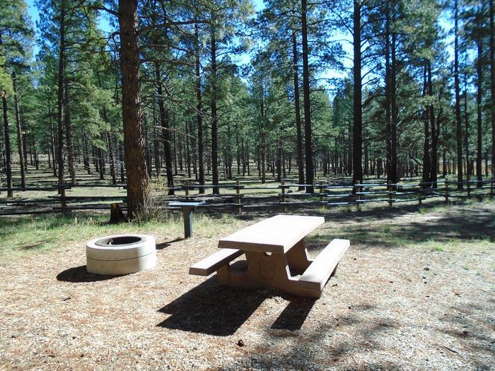 Campsite # 18