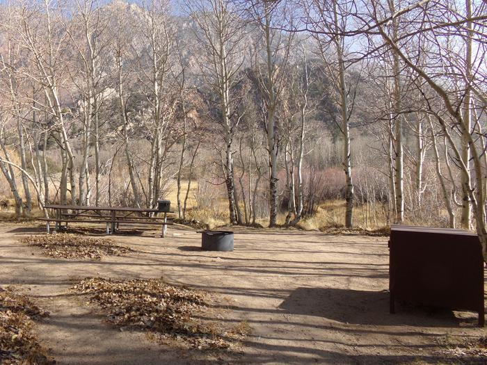 Table Mountain Group Campground with multiple large camping spaces among the trees.
